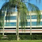 Colleges & Universities In Miami